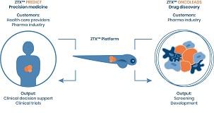 8.2_ZTXplatform2